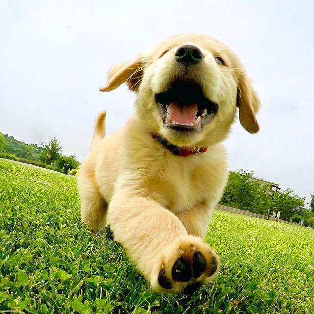 双手空空的人,才能懂得尽情奔跑的快乐。